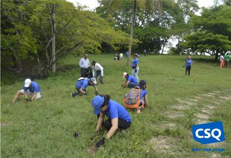 Reforestation in Santo Domingo